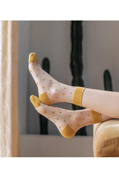 Носки женские Чулок хд27